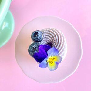 Blueberry Mini Pavlova